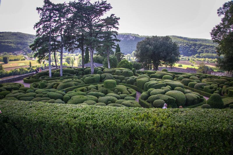 Topiary w ogrodzie Marquessac
